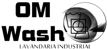 FICLO - Logo - Om Wash.png